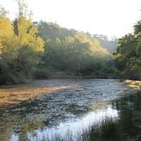 Fascinantni zvukovi Parka prirode Učka