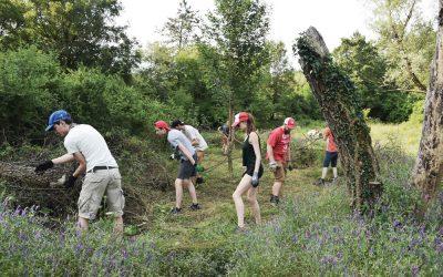 Vratimo livade leptirima! – pridružite se volonterskom kampu za  obnovu travnjaka u Parku prirode Učka
